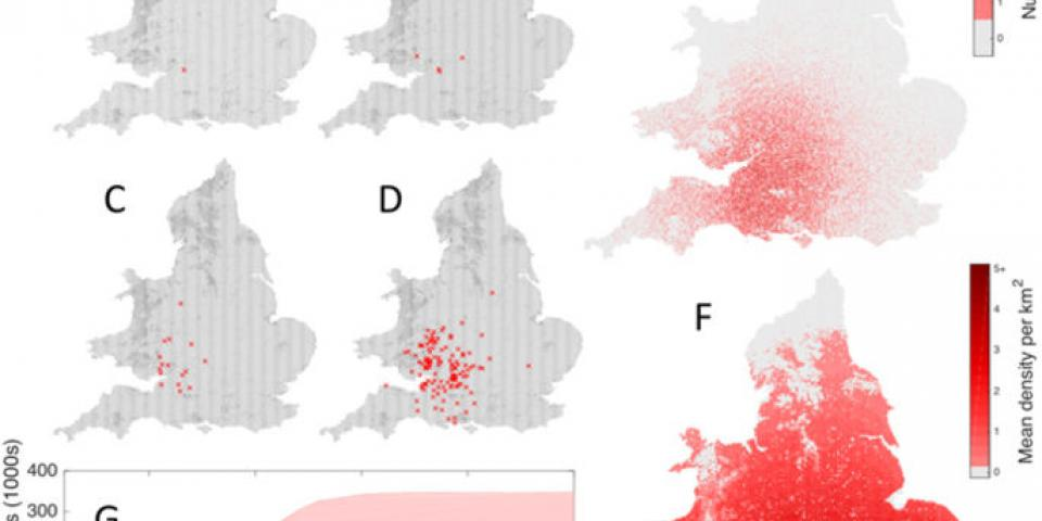 Dynamics of V. velutina nests in England and Wales showing its spatial spread and rapid increase in numbers