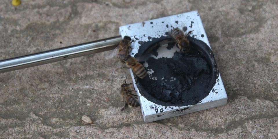 Bees on Vapmite rod