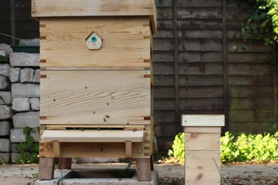 Little and large beehives
